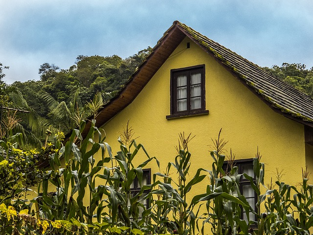 domek na venkově