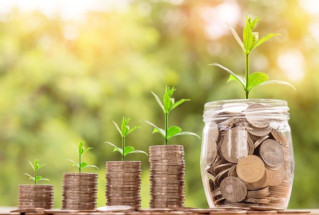 finanční rostlinky