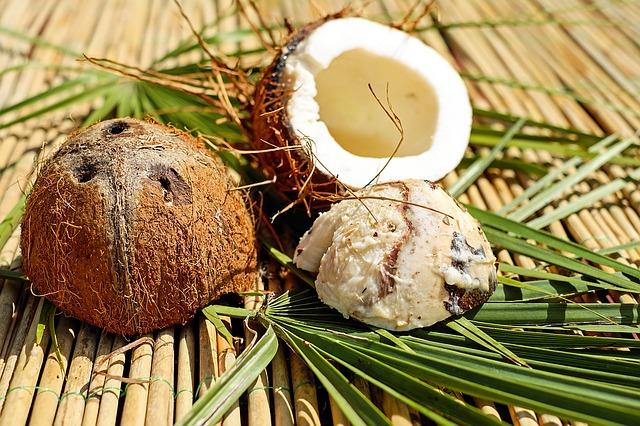 Kokosová dužina