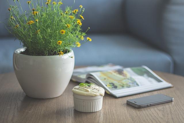 Květináč s rozkvetlou rostlinou